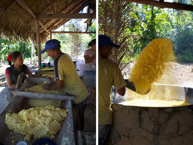 The manioc paste and roasting process