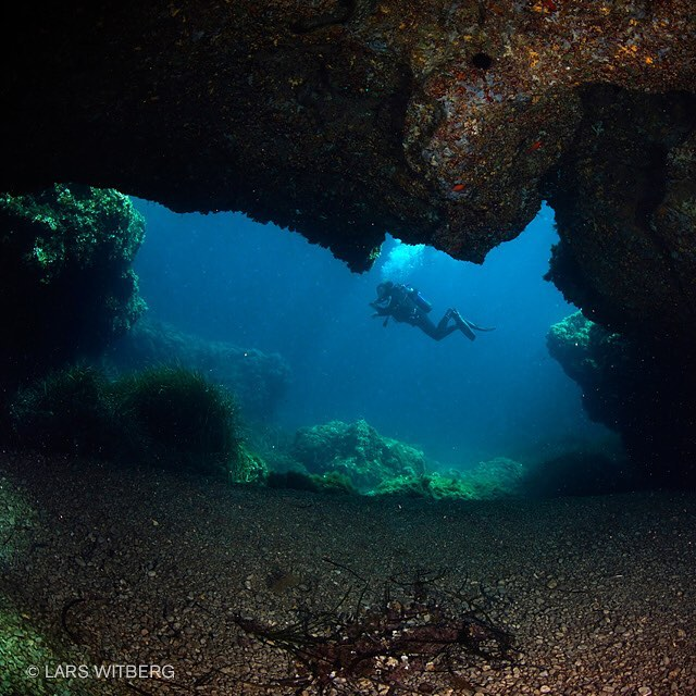 Swimming weightless in huge and spectacular underwater landscapes sometimes feelshellip