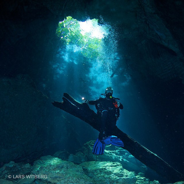 Wonderful Mexico. We struggle through the thick bushes in sweating heat and high humidity before finally jumping into the cool cenote water. The extreme clarity will never stop to amaze me. Here we are preparing for a photo shoot on an old log at 35 feet of water. The sunlight comes through the forest and into the water like beams. What a wonderful experience!  #water #underwater #sealife #underwaterphotograpy #underwaterworld #underwatercamera #underwaterphoto #underwatergram #instafish #tagblender #coral #coralreef #amazing #awesome #scubadiving #scuba #ocean #mexico #cenotes