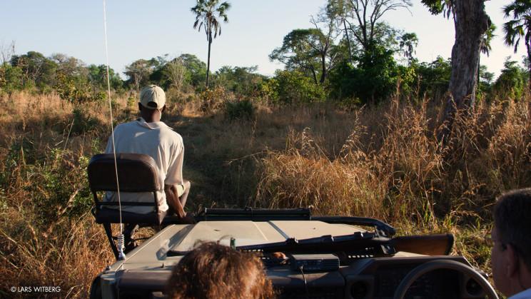 Lugenda_safari