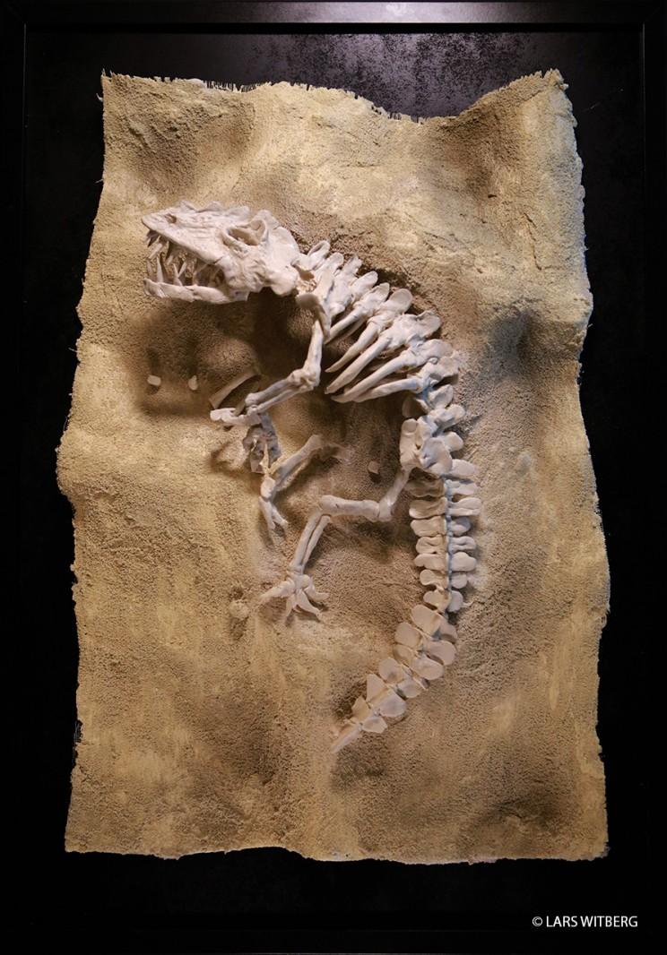 Dino_05